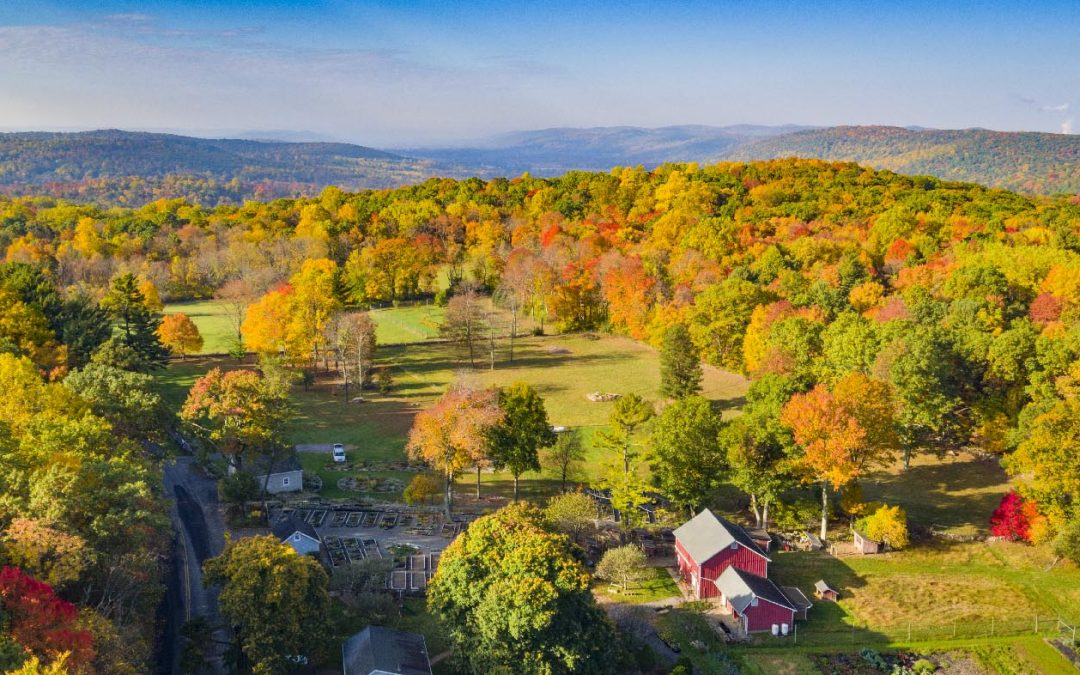 Autumn Drone photography in New Jersey