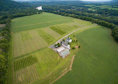 aerojo-drone-productions-agricultural-drone-services-denville-nj-Vineyard-NJ
