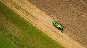 Drone Photograph of birds eye view of Combine Harvesting Wheat in New Jersey