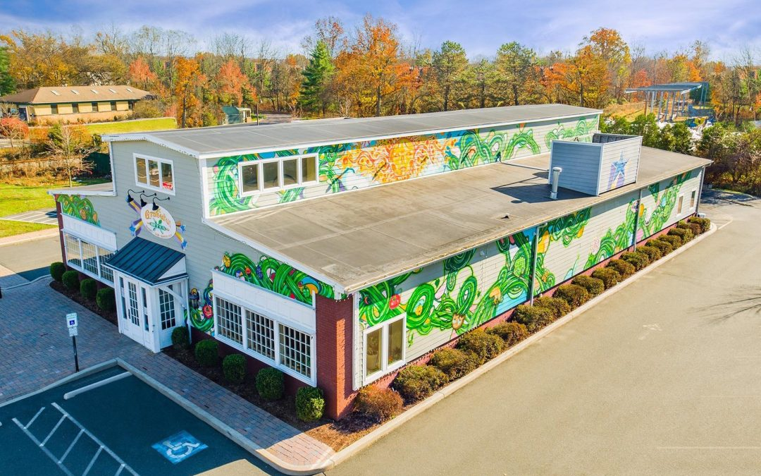 Drone photograph of Grateful Bites Flemington NJ