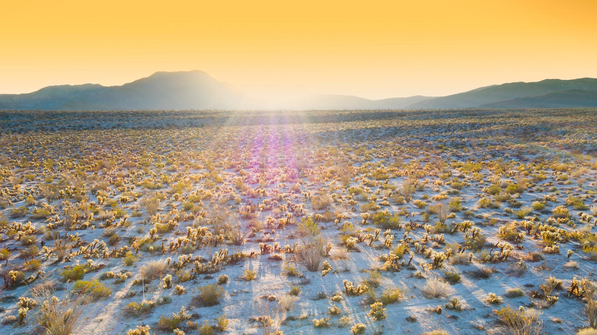 Drone Photograph of California Desert at sunrise