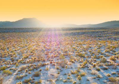 aerojo-drone-productions-drone-projects-California-Desert