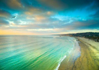 aerojo-drone-productions-drone-projects-California-LaJolla-SeaGull
