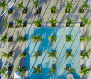 Drone Photograph of Birds eye view of Oceanside Civic Centers palm trees and pool