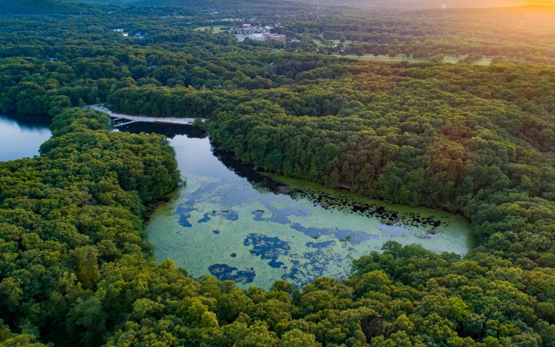 Drone Photography in Mountain Lakes, New Jersey