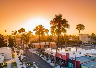 aerojo-drone-productions-drone-projects-oceanside-California-Palms